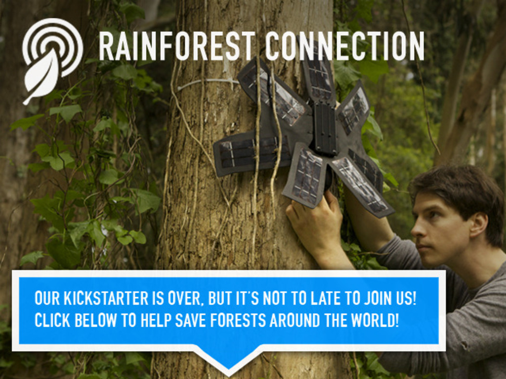 Rainforest Connection - Phones Turned to Forest Guardians's video poster