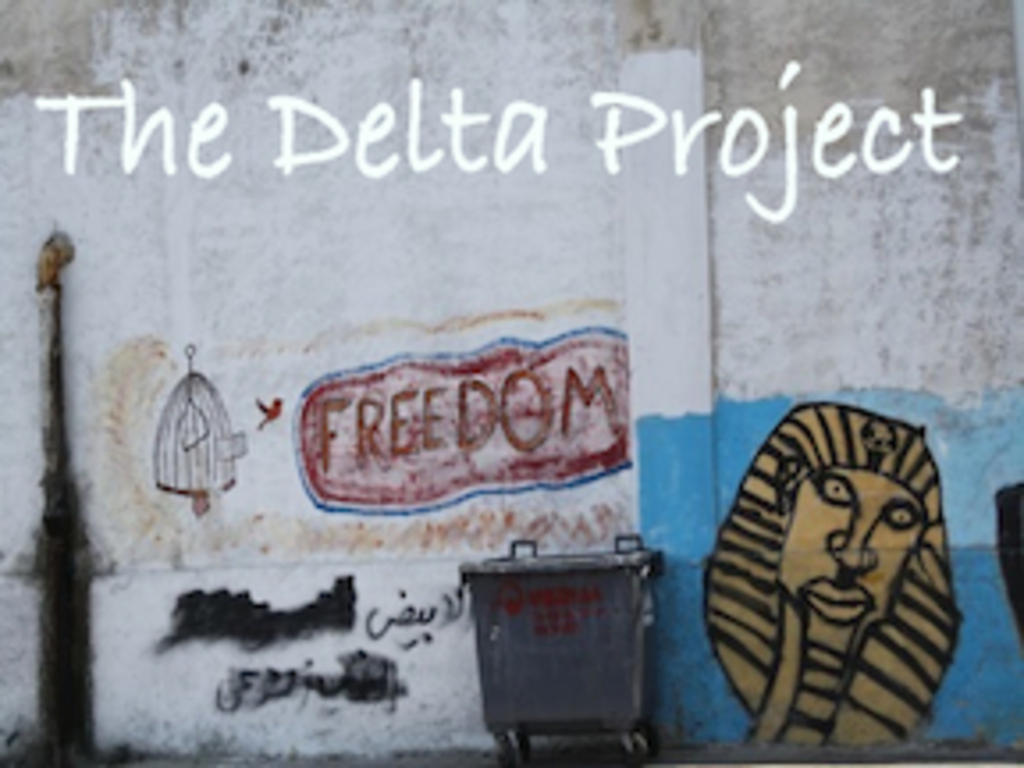 The Delta Project's video poster