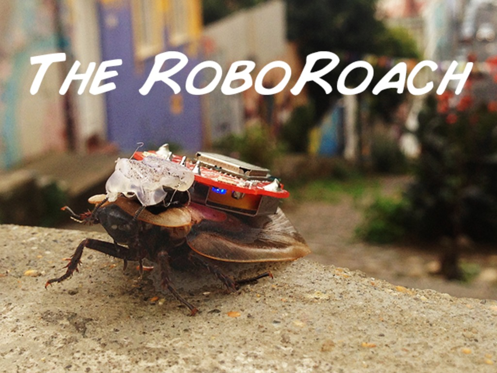 The RoboRoach: Control a living insect from your smartphone!'s video poster