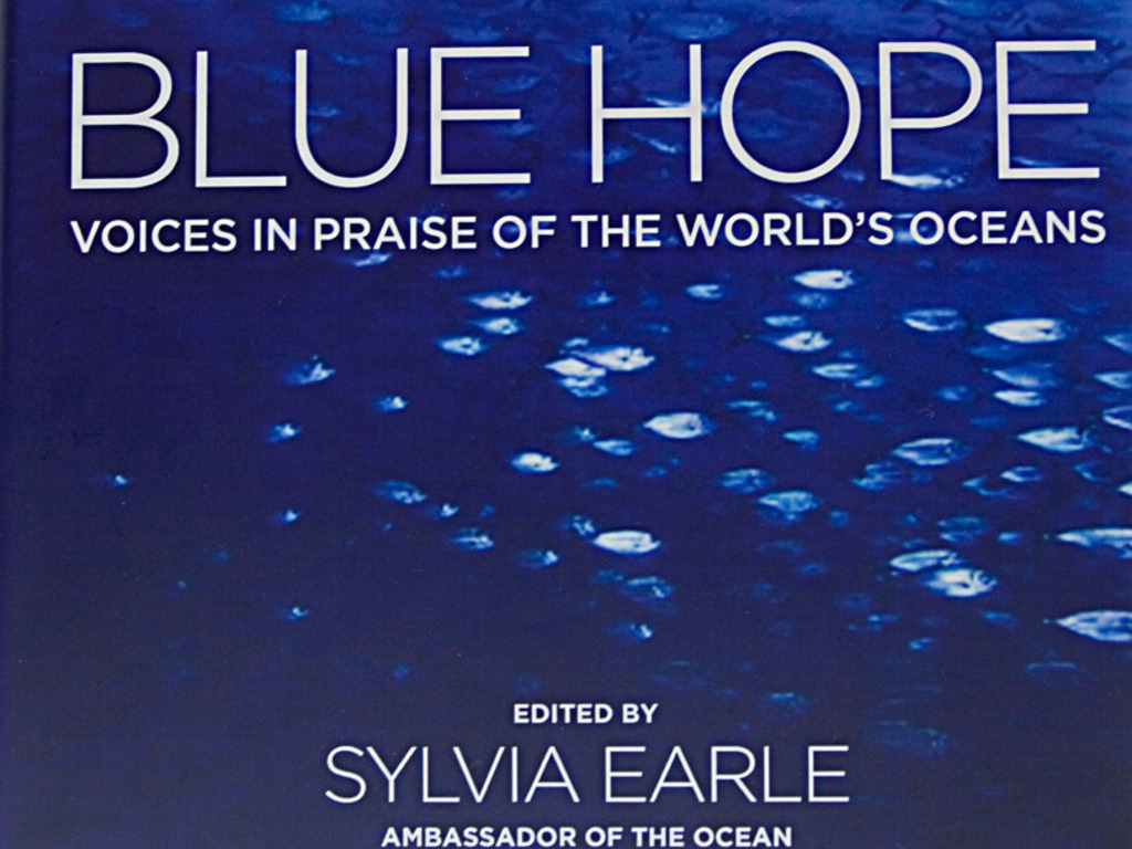 Blue Hope - An Ocean Book for the World's video poster