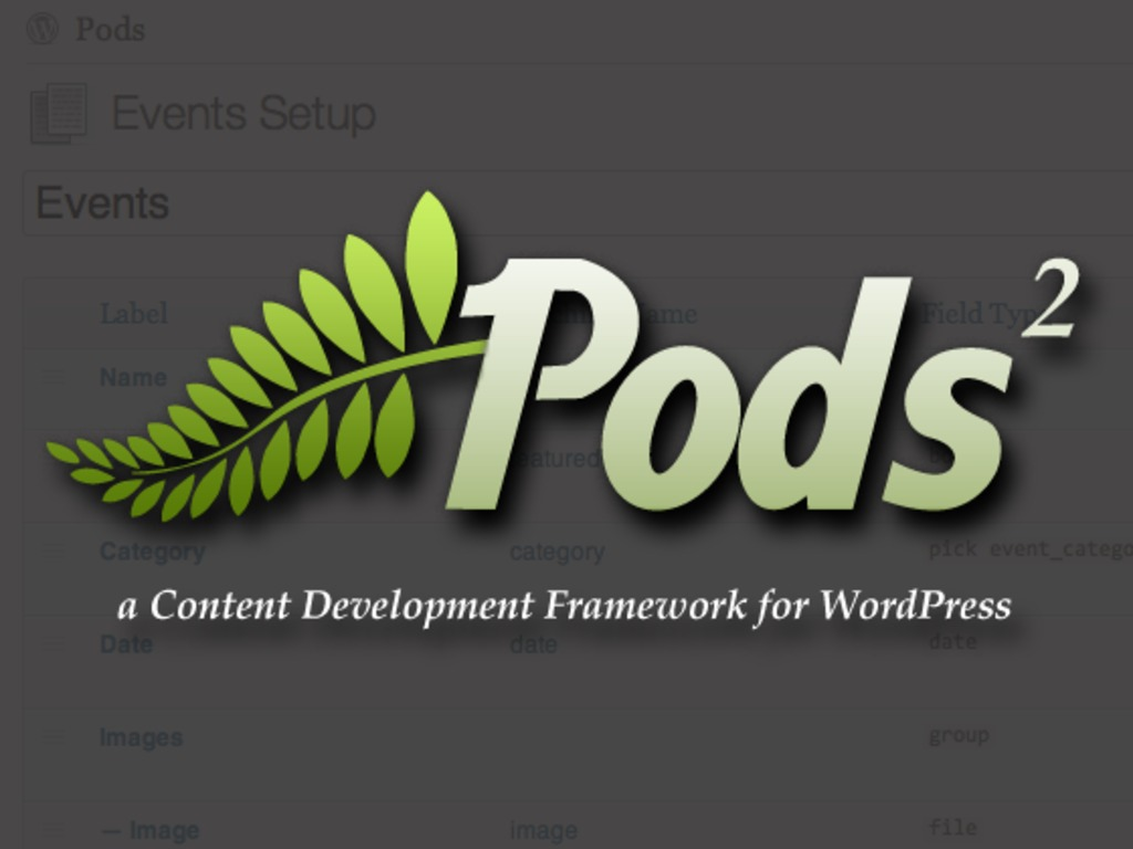 Pods Development Framework 2.0 for WordPress's video poster