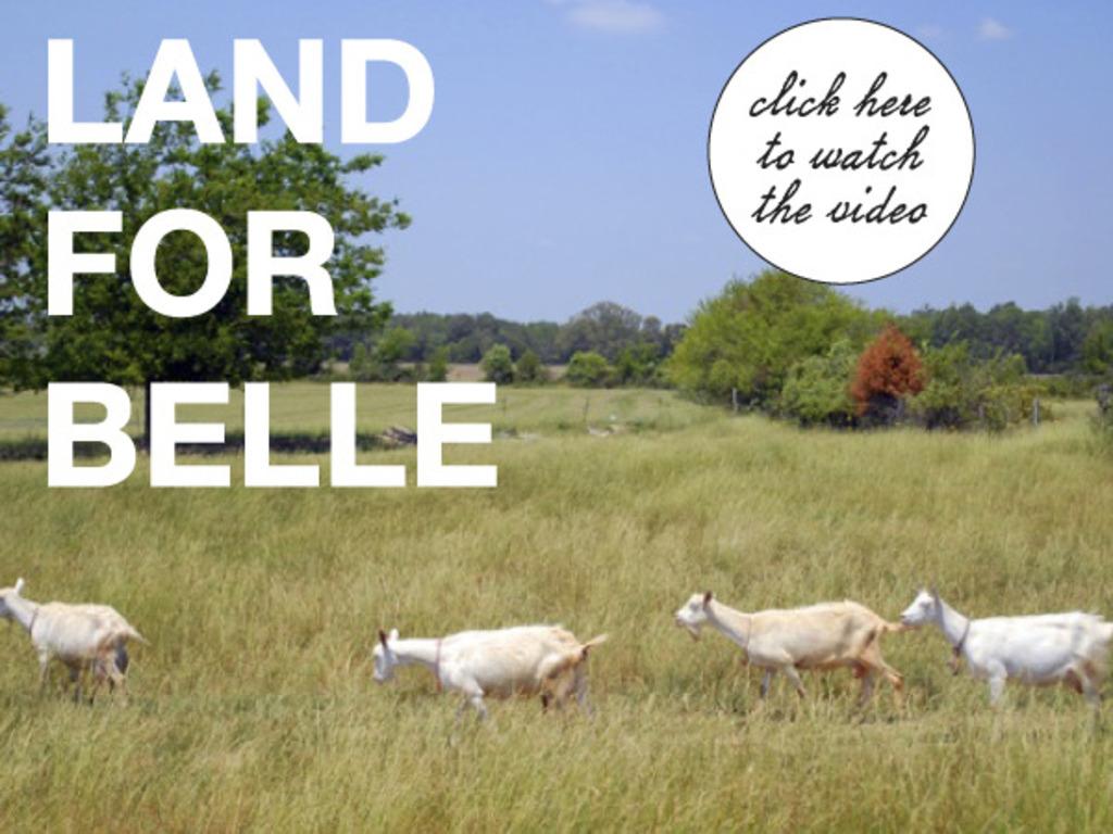 Land for Belle: Plot for a New Creamery's video poster