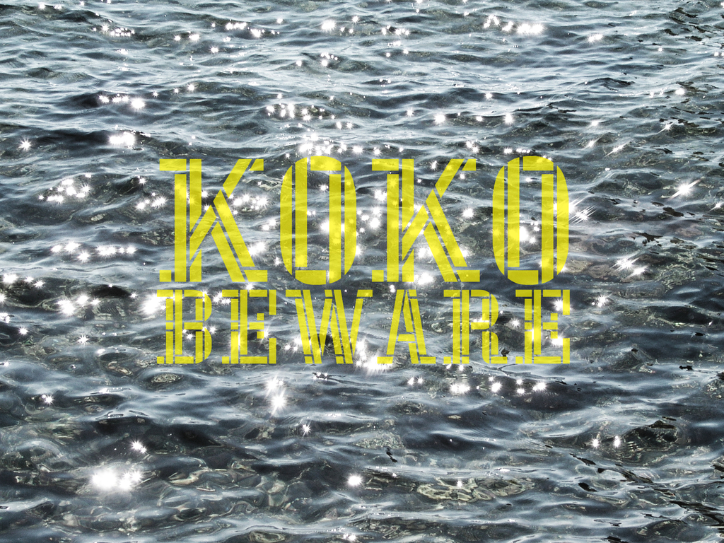 help koko beware make a record's video poster