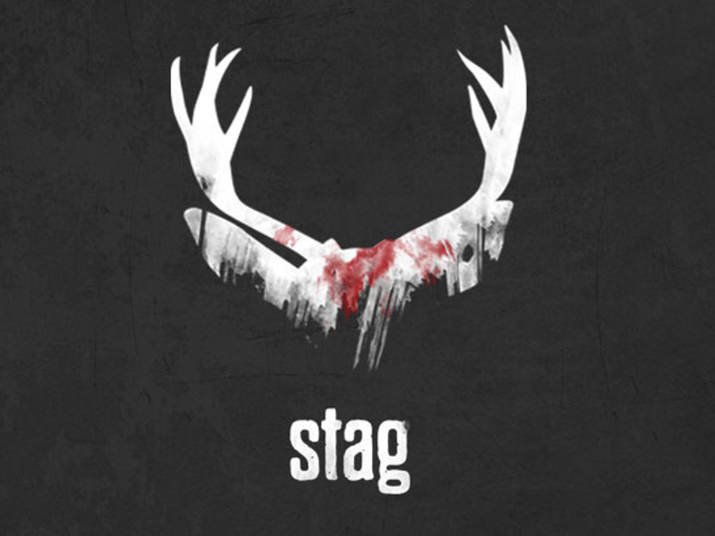 Stag's video poster