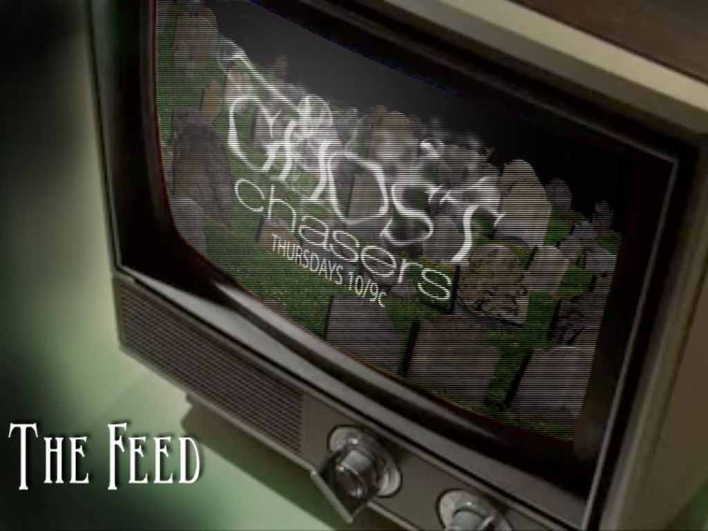 The Feed, an independent horror feature's video poster