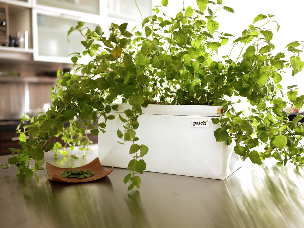 Self-Watering Patch Planter for Herbs and Greens's video poster