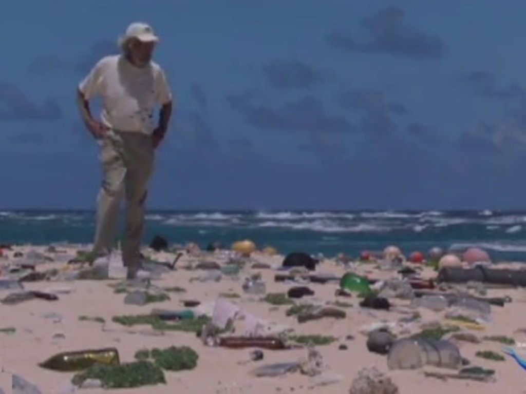Fish Bones - an Environmental Film with Jean-Michel Cousteau's video poster