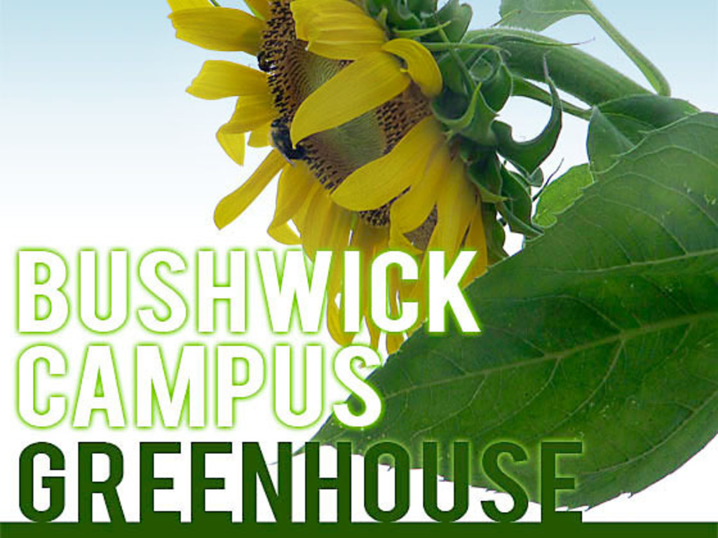 Bushwick Campus Greenhouse's video poster