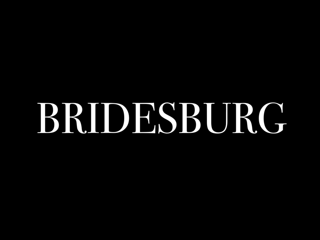 BRIDESBURG's video poster