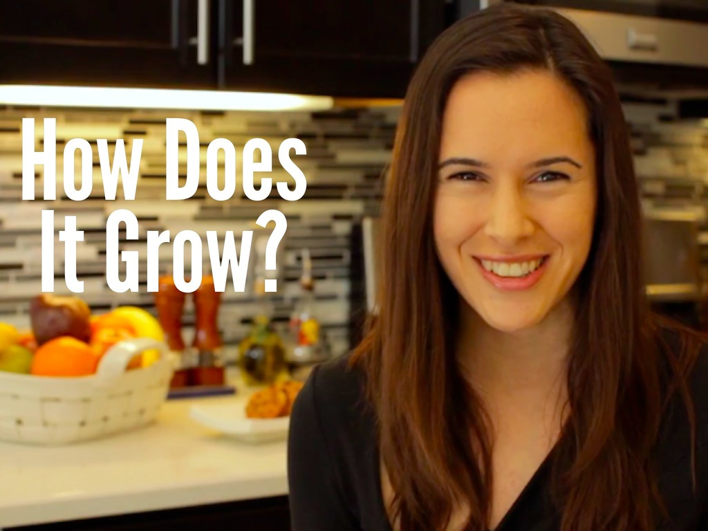 """How Does it Grow?"" Video Series's video poster"
