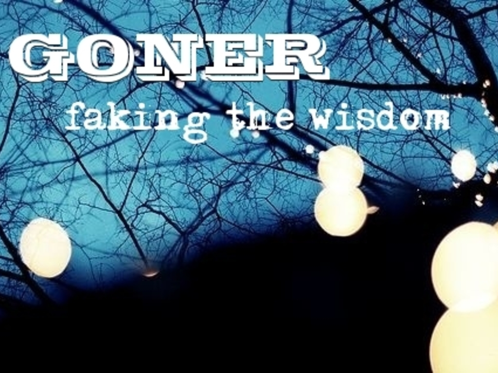 Faking The Wisdom's video poster