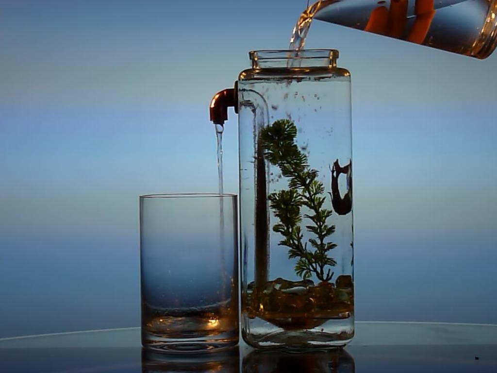 NoClean Aquariums™ - Self-Cleaning Betta Fish Tank!'s video poster