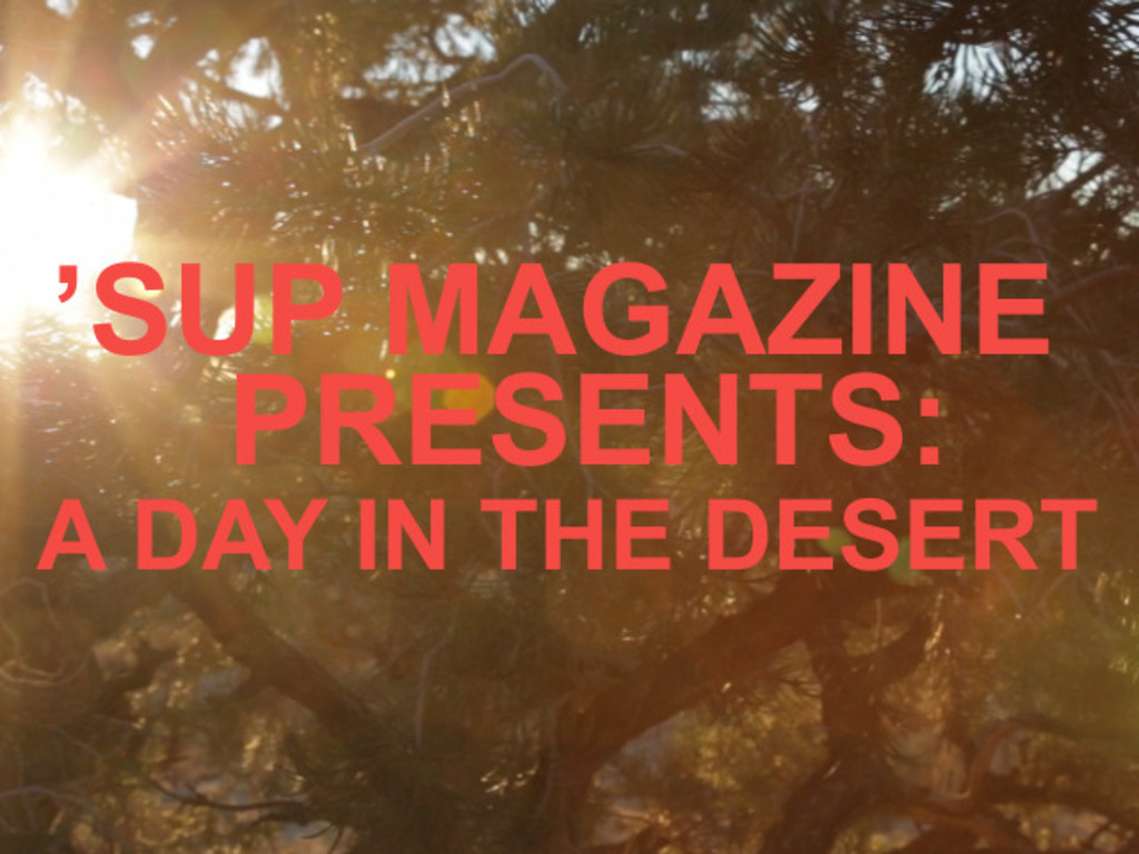 A DAY IN THE DESERT's video poster