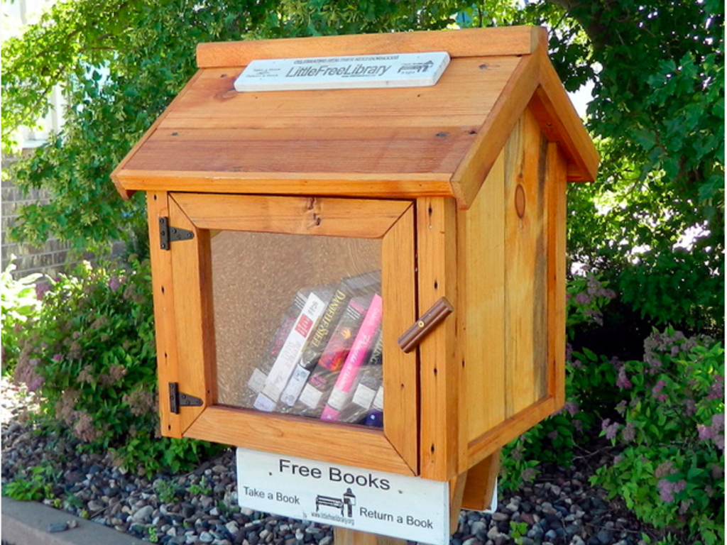 Little Free Library - Abbotsford, British Columbia's video poster