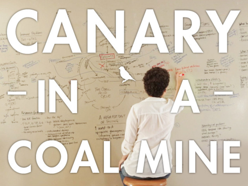 Canary in a Coal Mine's video poster