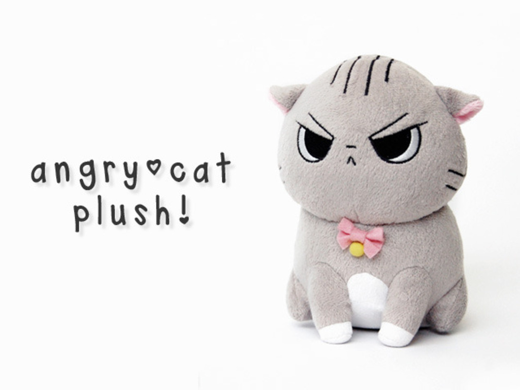 Angry Cat Plush!'s video poster