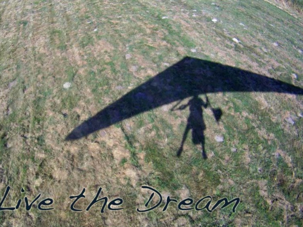 Live the Dream.'s video poster