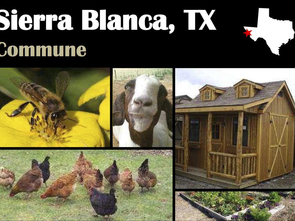 Organic Growing& Bee Farming On Eco Ranch- Feeding The Needy's video poster