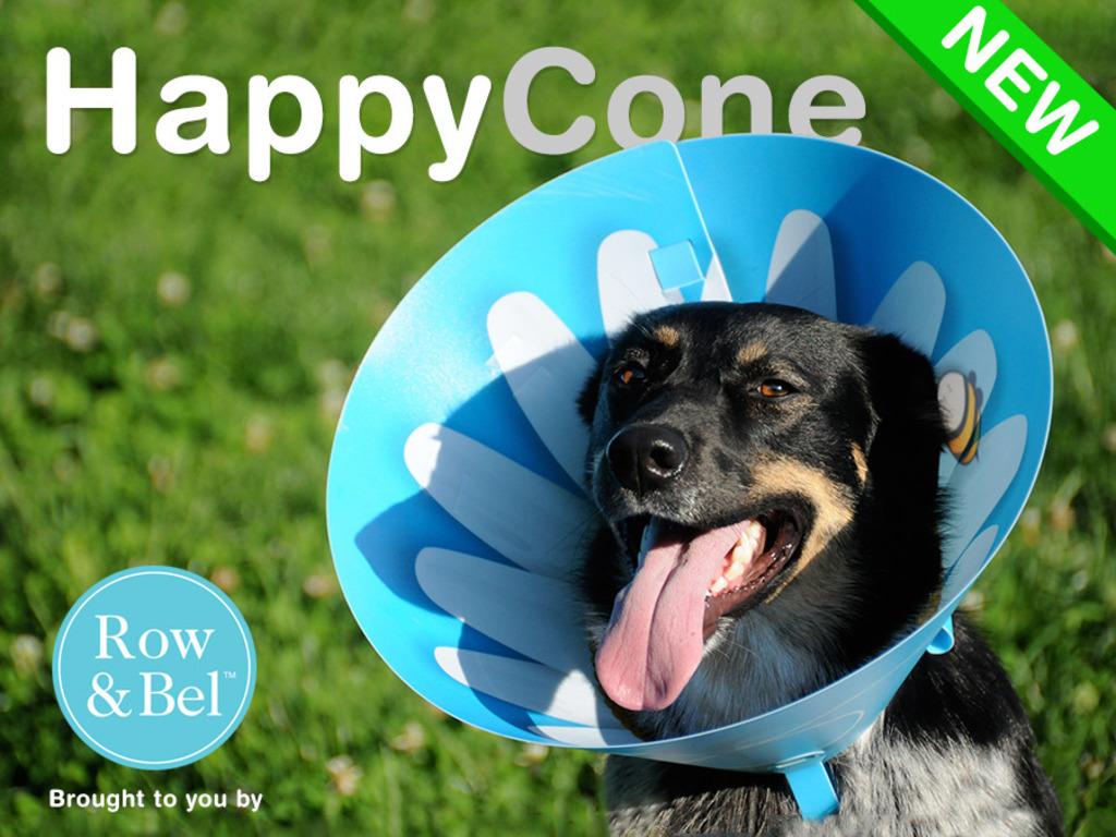 Happy Cone's video poster