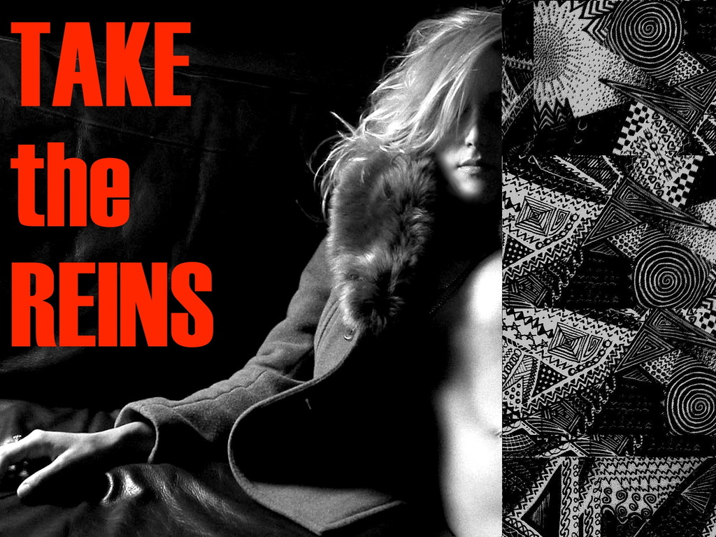 || TAKE the REINS || (Canceled)'s video poster