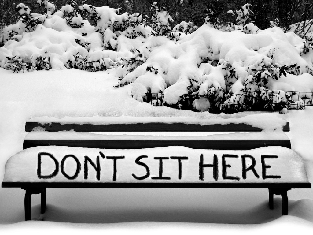 DON'T SIT HERE, A NOVEL's video poster