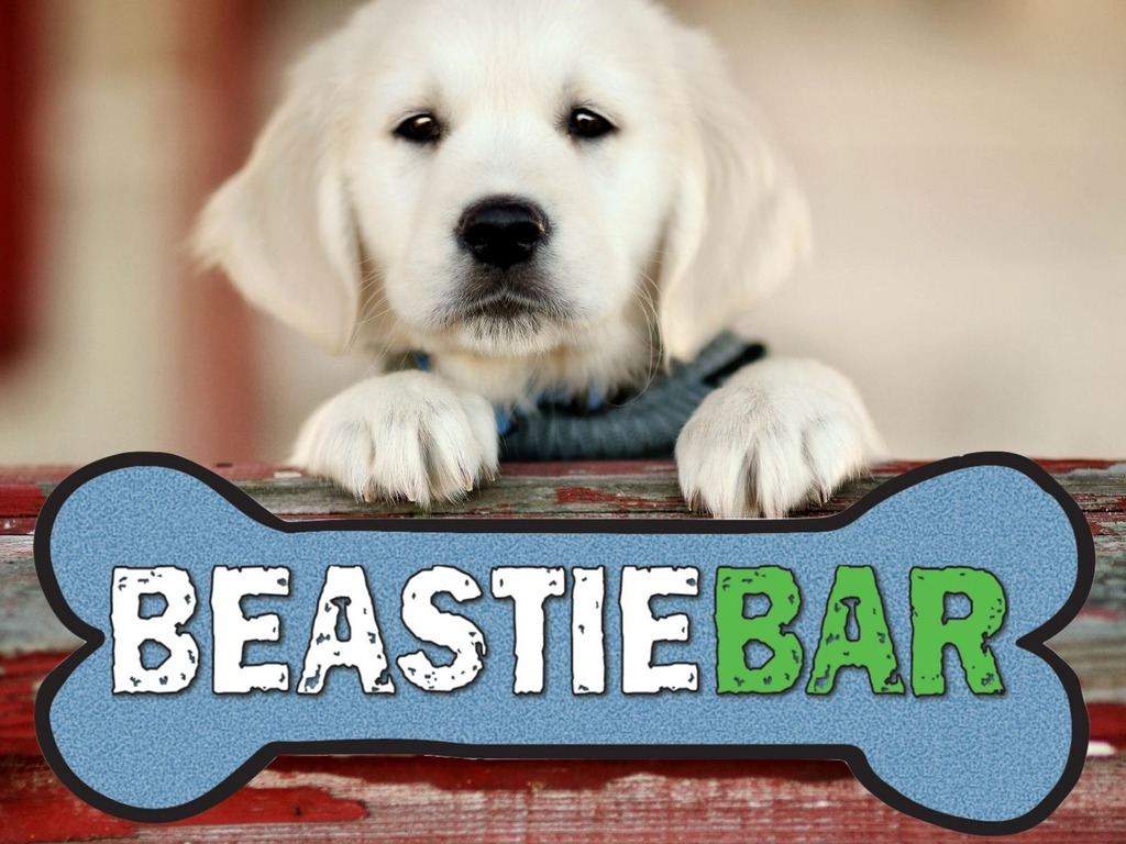 The Beastie Bar - Individually Wrapped, American Dog Treats's video poster