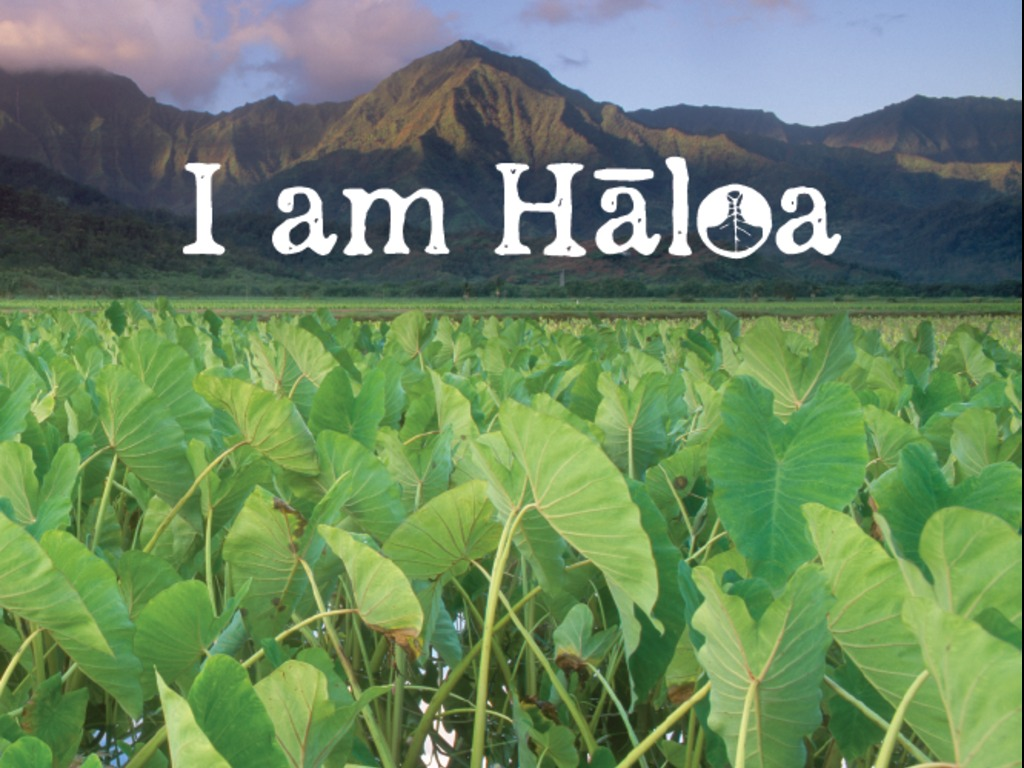 I am Haloa: Food is Culture's video poster