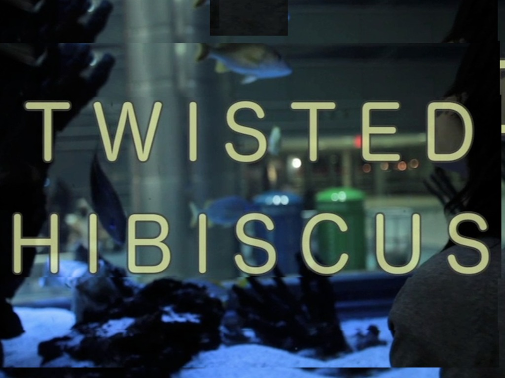 Twisted Hibiscus Finishing Funds's video poster