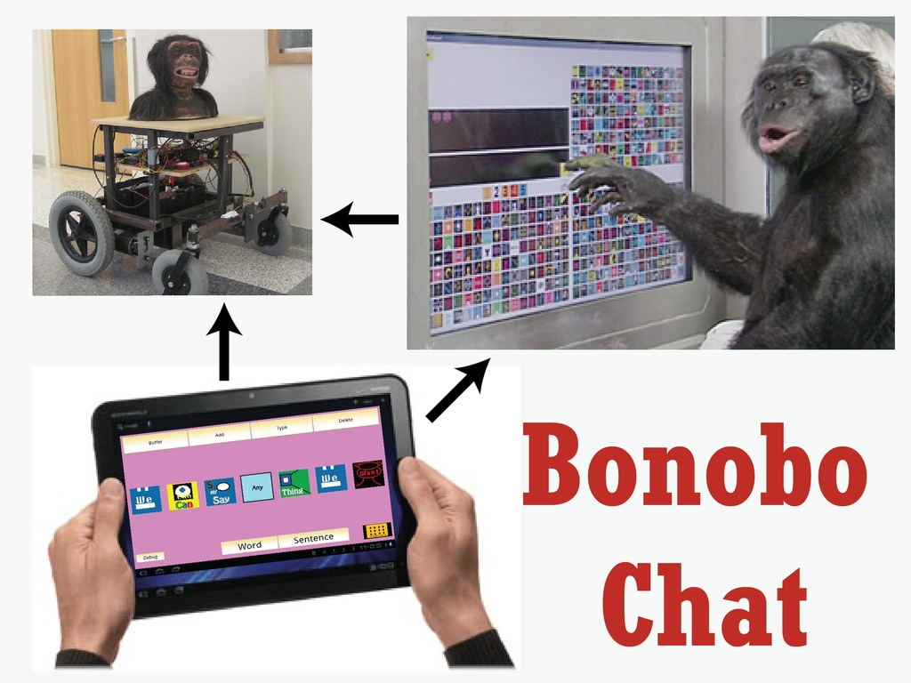 Bonobo Chat: An app for talking with apes's video poster