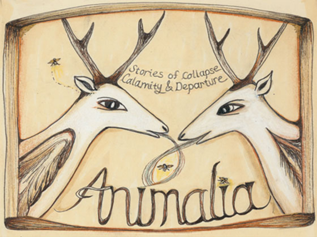 Animalia Animation's video poster