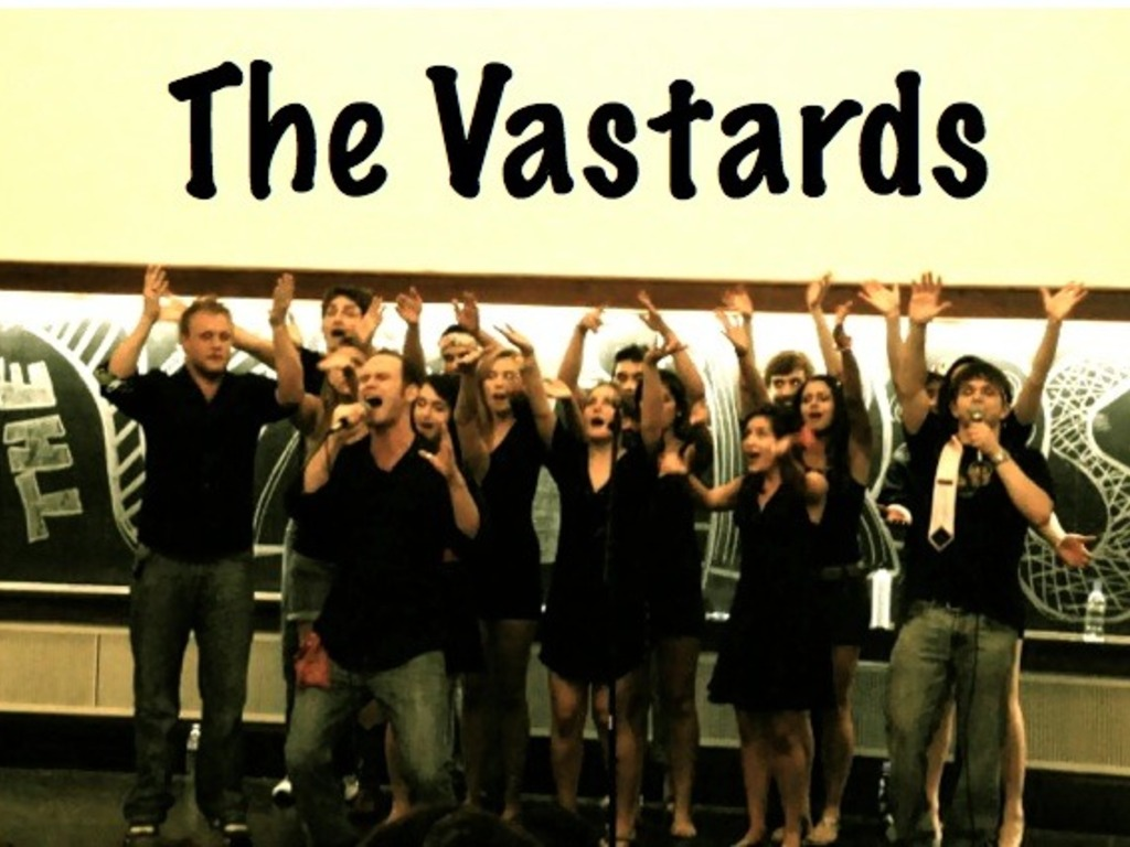 The Vastards's video poster