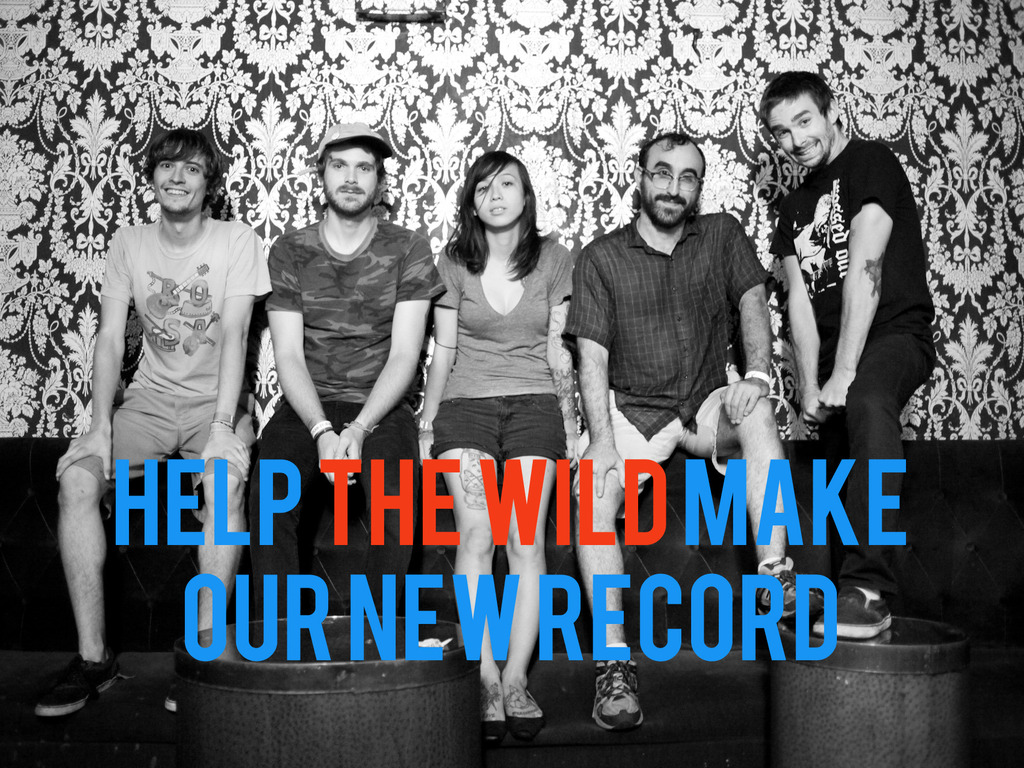 HELP THE WILD MAKE OUR NEW RECORD's video poster