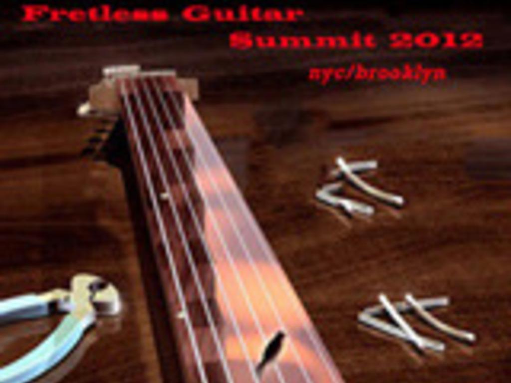 2012 International Fretless Guitar Summit's video poster