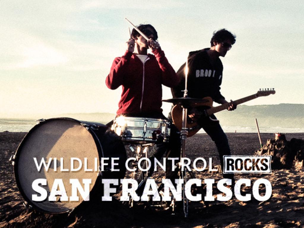 Wildlife Control Rocks San Francisco's video poster
